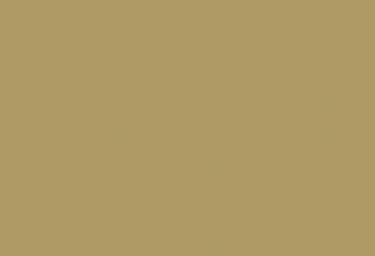 Jonald Bouwhuis